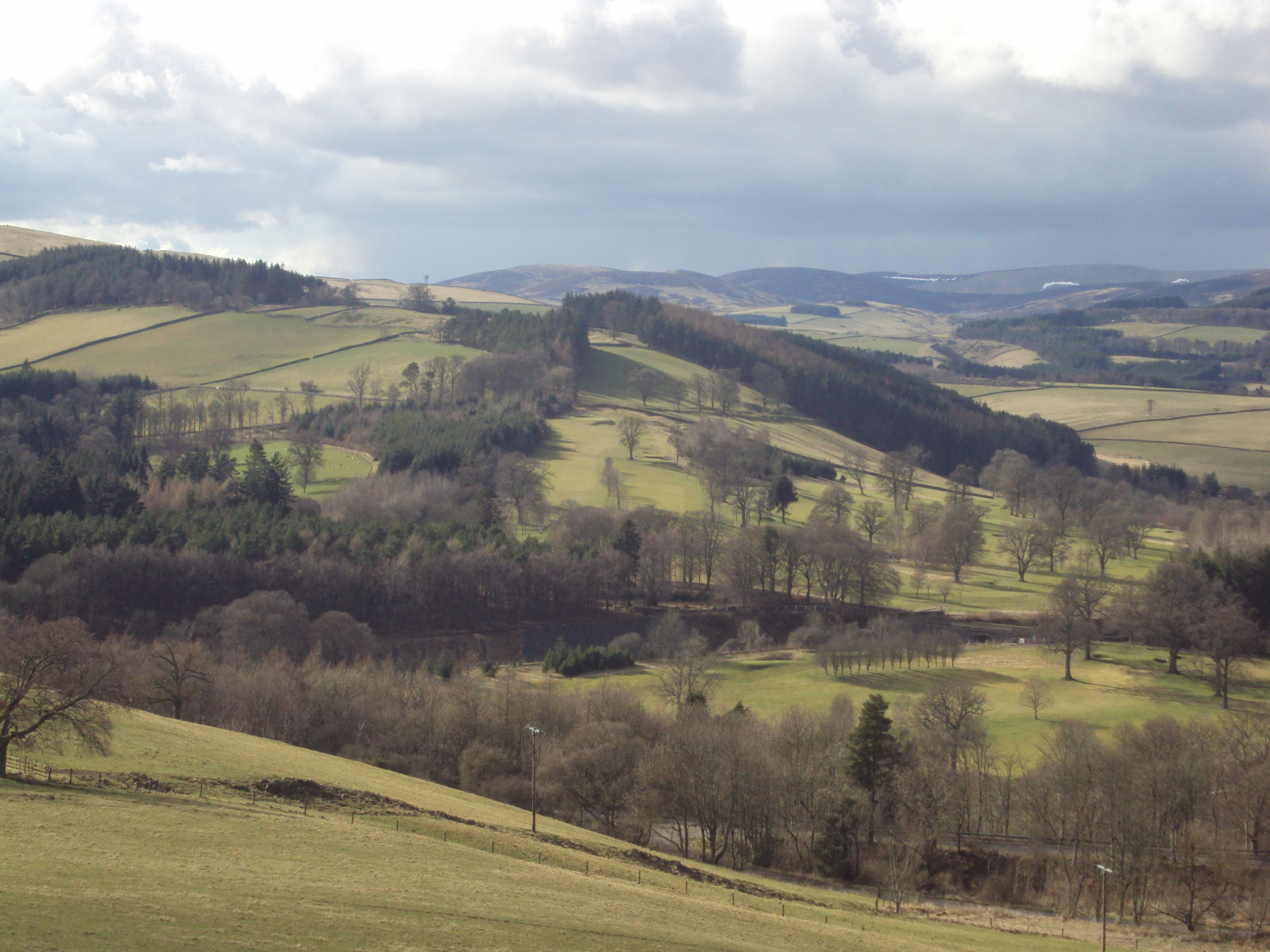180325 Mains Hill and Bowland woodlands